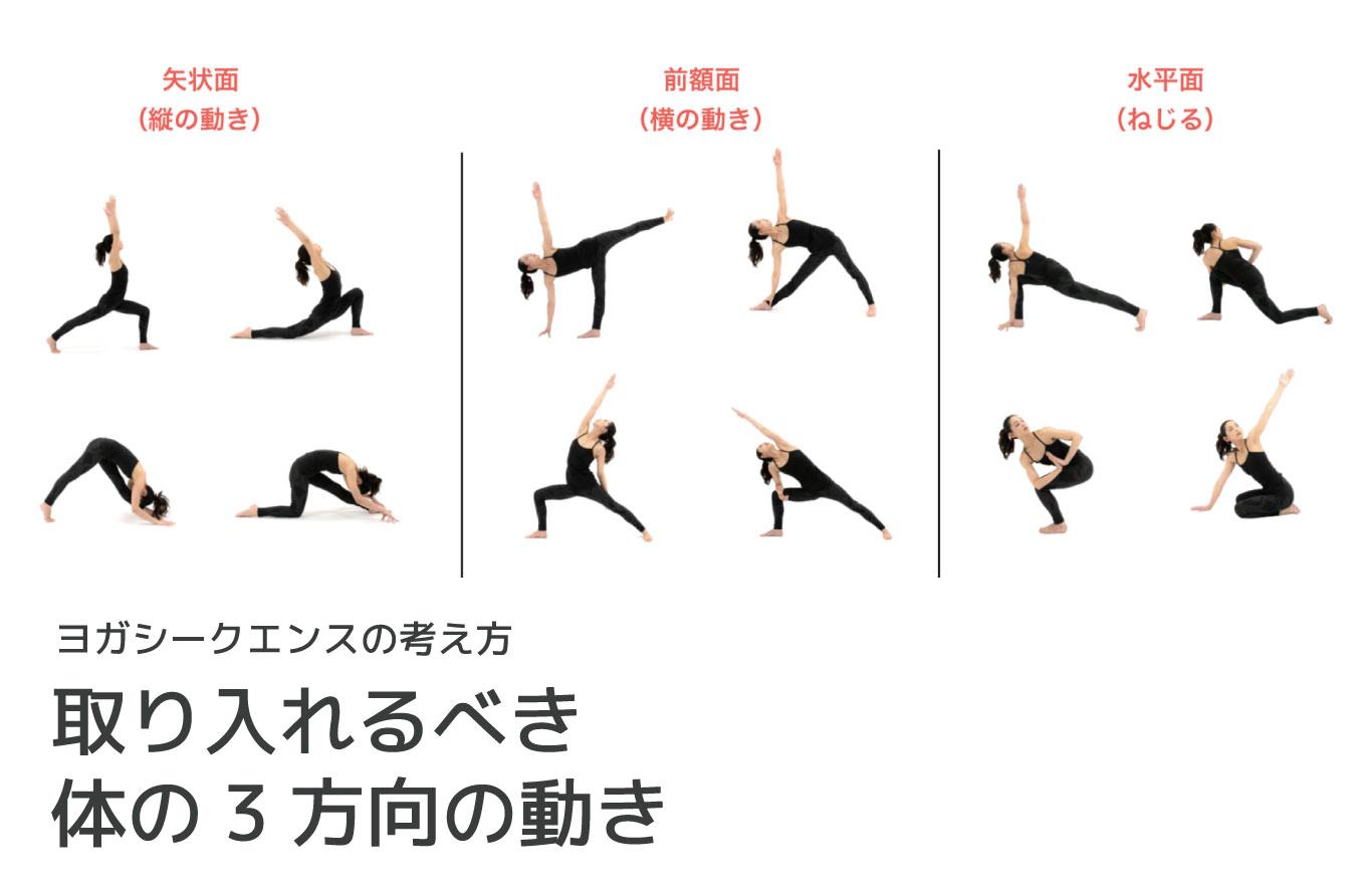 ヨガシークエンスの考え方:取り入れるべき体の3方向の動き